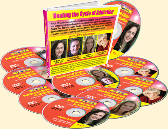 Healing the Cycle of Addictions DVD set